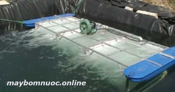 máy sục khí oxy hồ cá